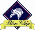 Blue Chip New logo - 2008